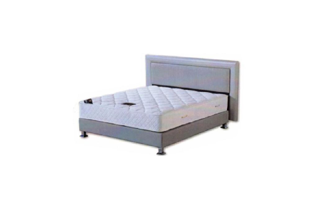 מיטת בסיס גריי